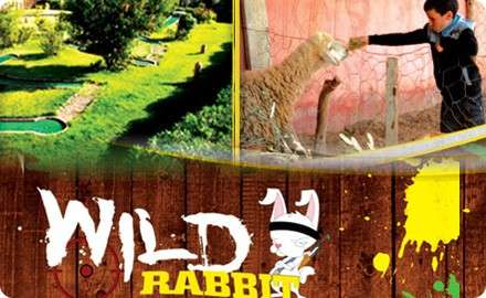 Wild-rabbit-Souihla